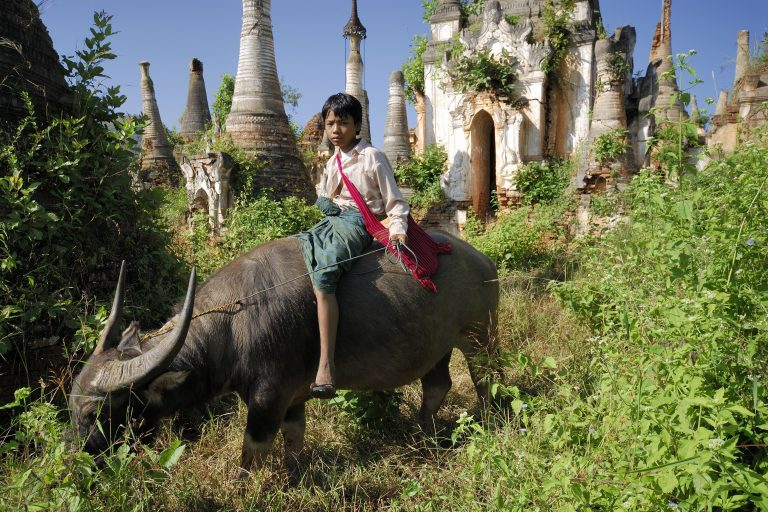 Top things to do in and around Inle Lake